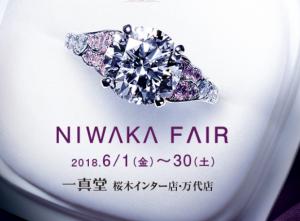 【6月1日更新】最新ブライダルフェア情報!【2018年】