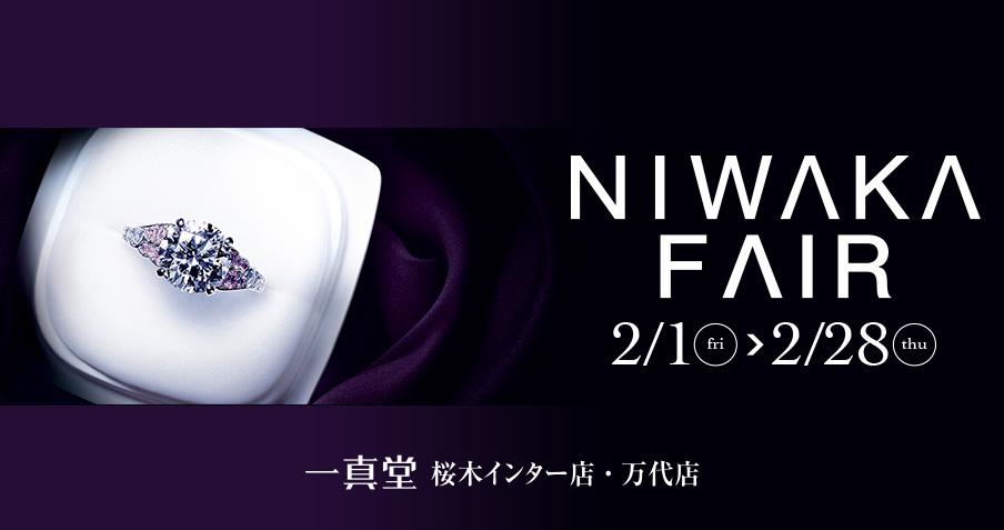 NIWAKA FAIR
