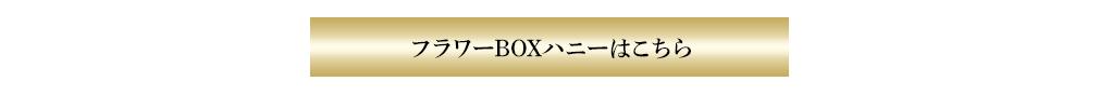 ハニーサプライズボックス