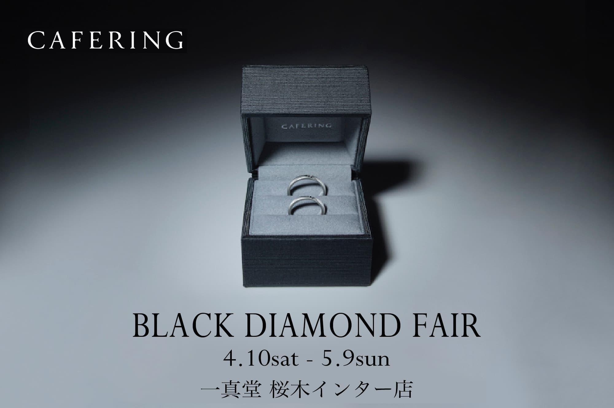 cafering black diamond fair