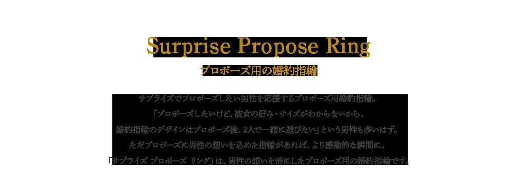 Surprise Propose Ring プロポーズ用の婚約指輪