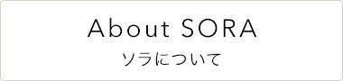 About SORA