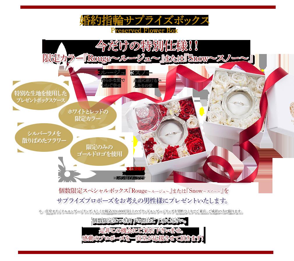 今だけの特別仕様!!X'mas限定カラー『Rouge〜ルージュ〜』または『Snow〜スノー〜』
