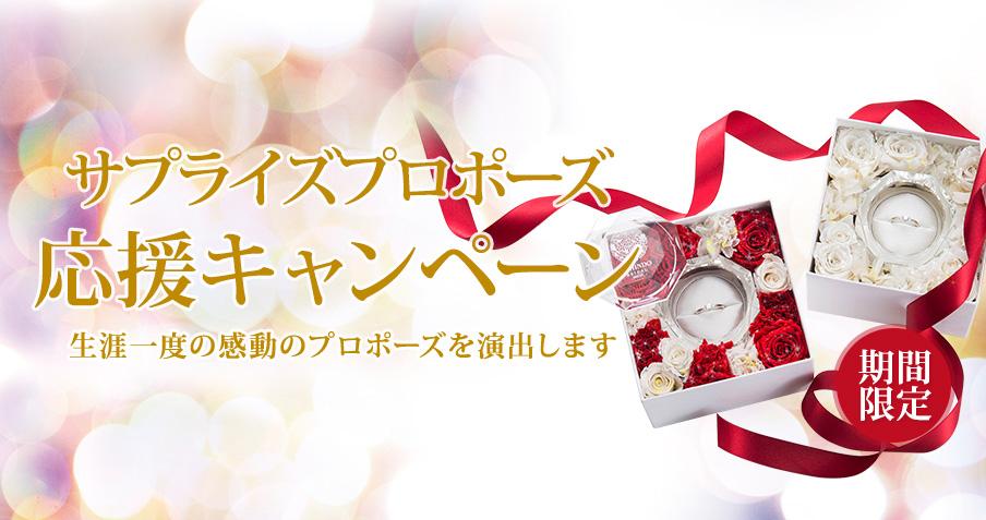 クリスマスフラワーBOX